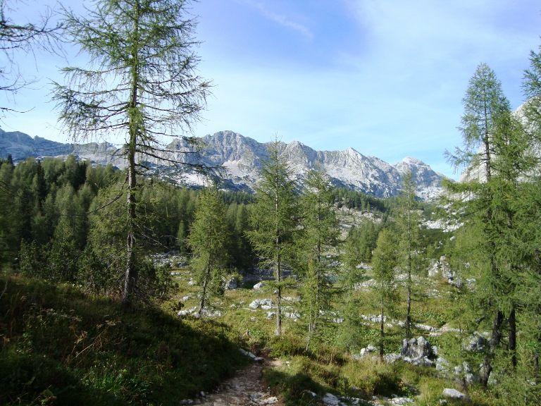Szlak na Triglav - środkowa część szlaku z widokiem na góry