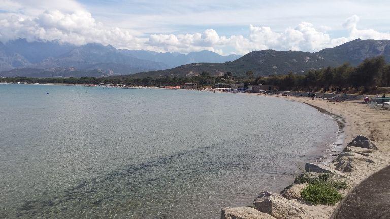 plaża w Calvi