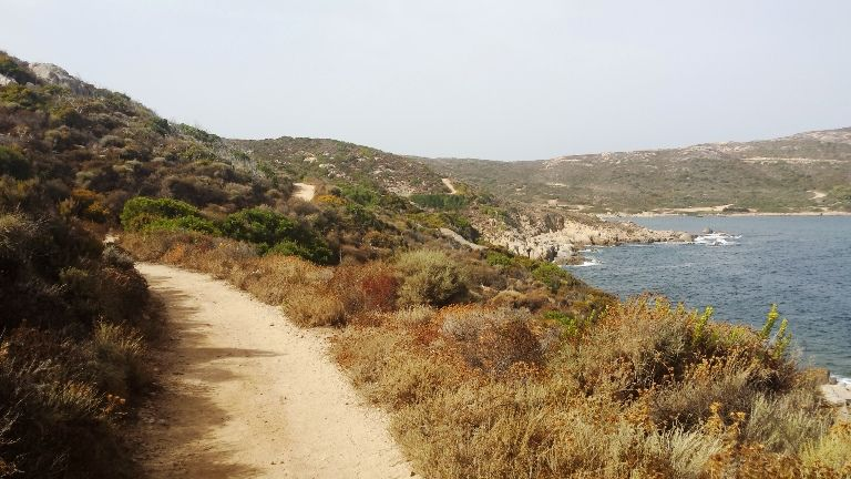 ścieżka z Calvi na półwysep La Revellata