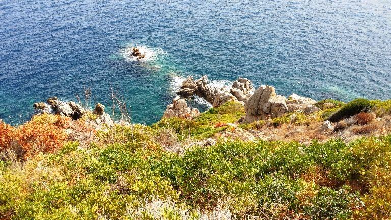 La Revellata - wybrzeże porośnięte makią