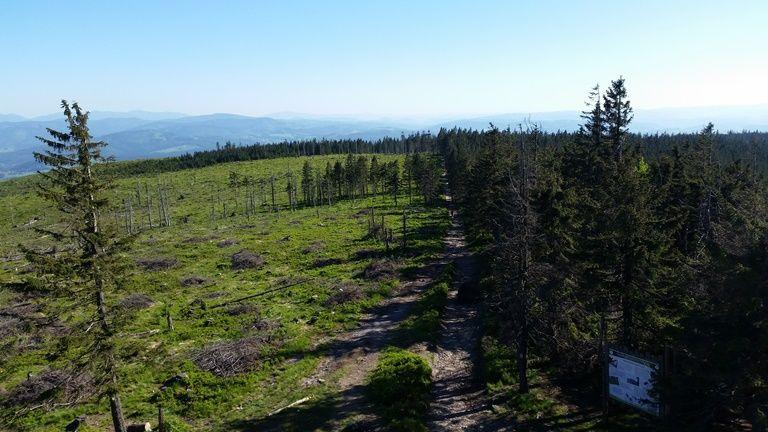 szlak z Baraniej Góry do Wisły