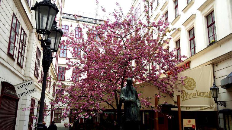 wiosna w Pradze
