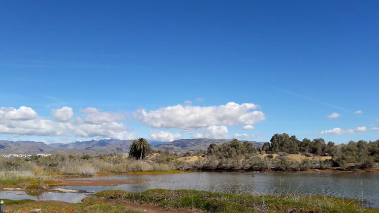 Laguna la Charca