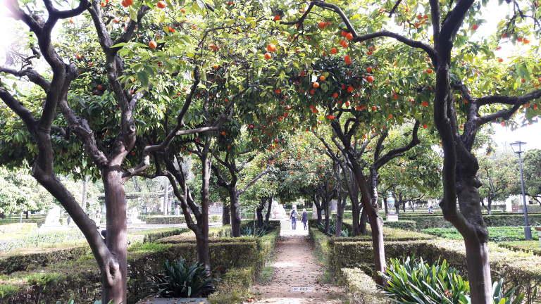 Park Marii Luizy