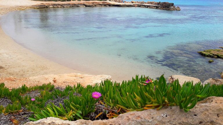 Ayia Napa – majówka na Cyprze