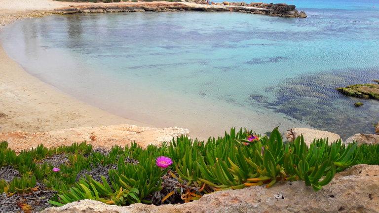 plaża Latchi