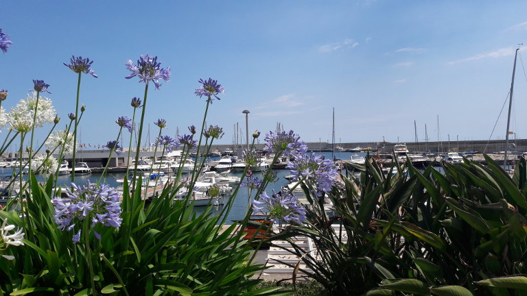 Port w Blanes