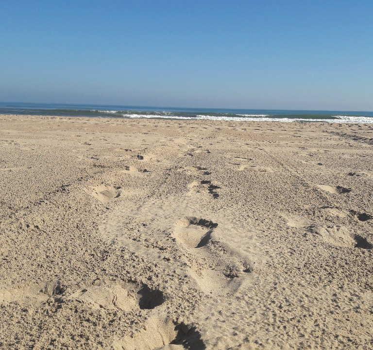 Plaża w Gandii