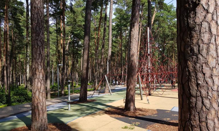 Park leśny w Jurmale