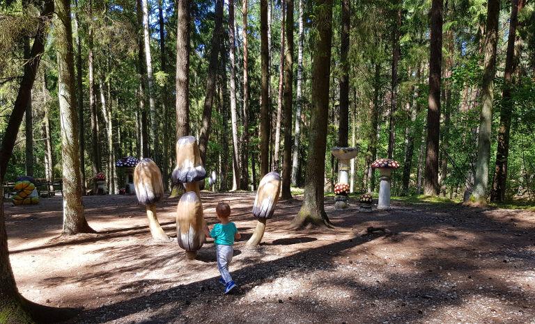 Wielkie drewniane grzyby
