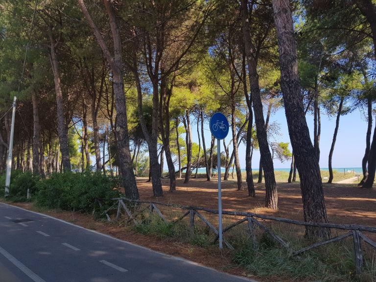 Droga rowerowa w Silvi