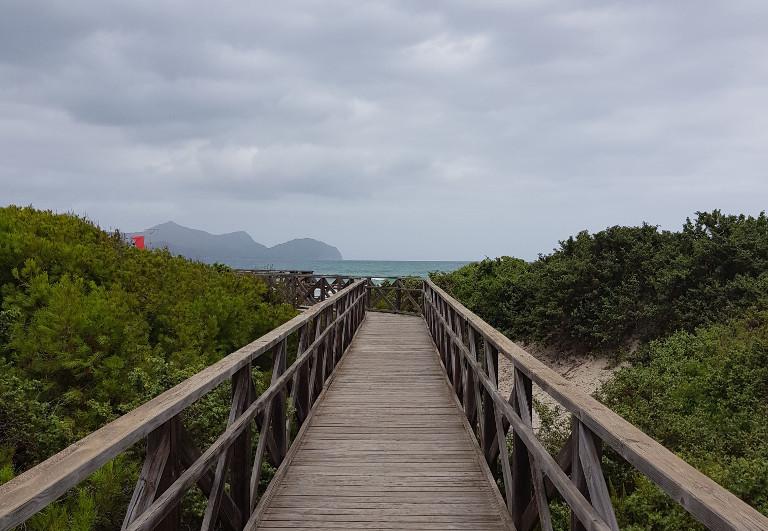 Zejście na plażę z wydm